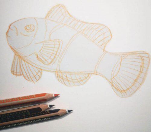 Buntstiftzeichnung Sternzeichen Fische Clownfisch 1