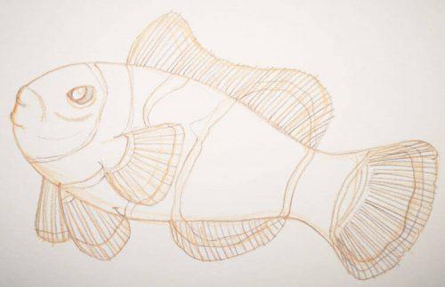Buntstiftzeichnung Sternzeichen Fische Clownfisch 2