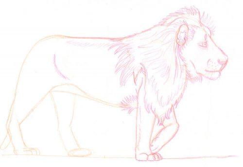 Löwe zeichnen mit Eno Color