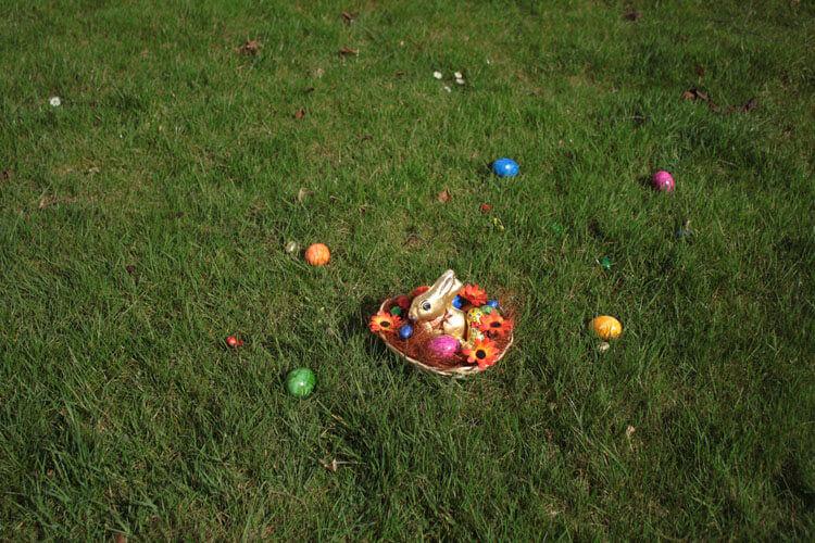 Fotovorlage zum Abzeichnen: Osterhase im Osternest 4