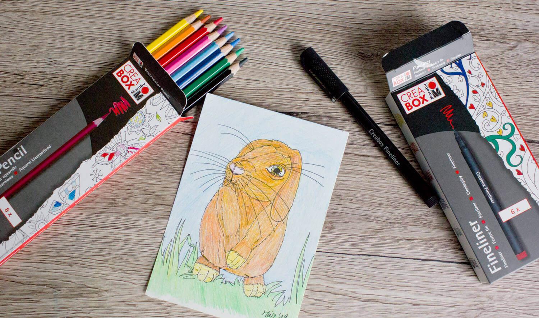 Kaninchen zeichnen lernen
