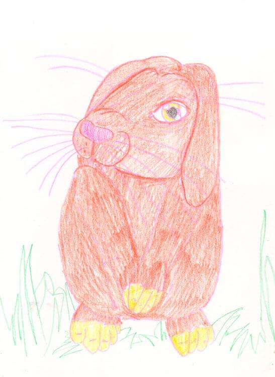 Postkarte: Kaninchen Kolorierung mit Aquarellbuntstift 1