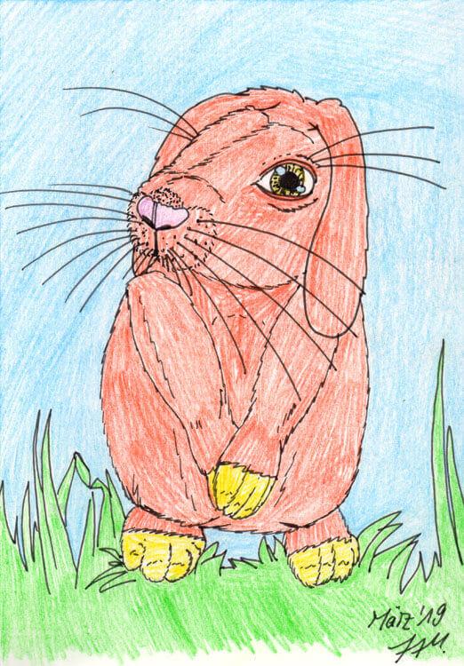 Postkarte: Kaninchen Kolorierung mit Aquarellbuntstift 1 Version 1