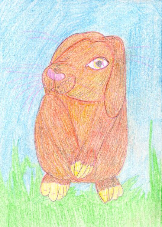 Postkarte: Kaninchen Kolorierung mit Aquarellbuntstift 2