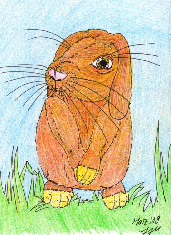 Postkarte: Kaninchen Kolorierung mit Aquarellbuntstift 2 Version 1