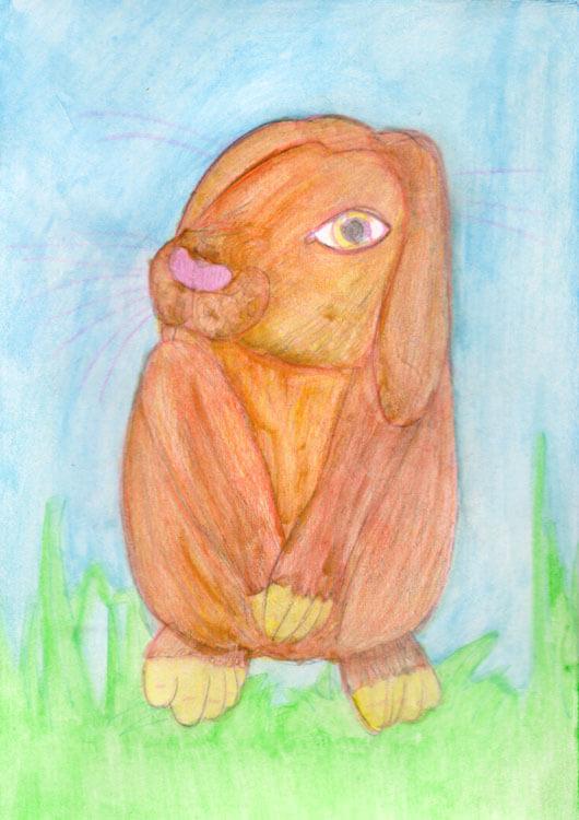 Postkarte: Kaninchen Aquarellbuntstift Kolorierung mit Wasser vermalt