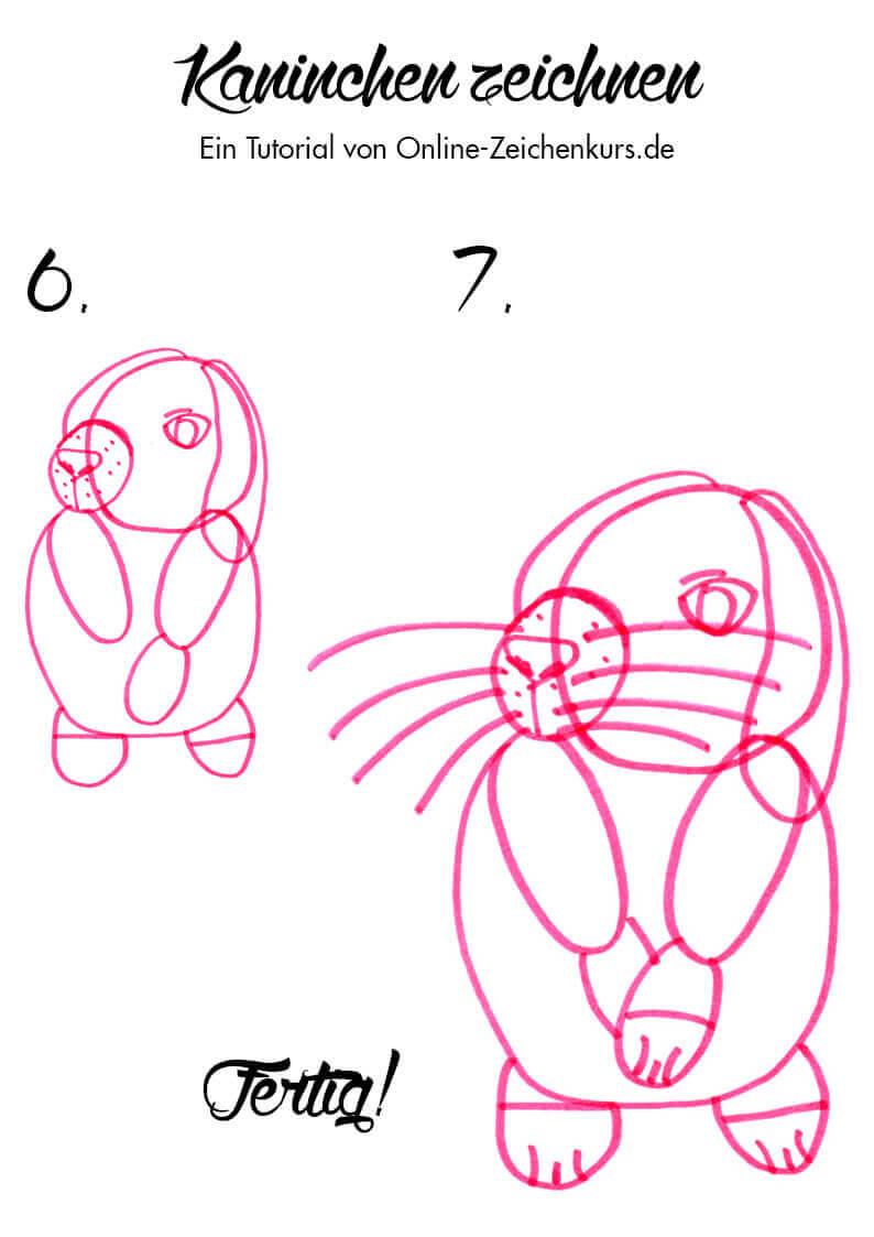 Tutorial: Kaninchen zeichnen 3