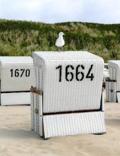 Nordseeküste Fotovorlage zum Abzeichnen Möwe auf Strandkorb 2