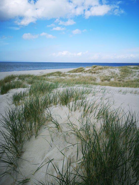 Düne mit Sandstrand am Meer 10