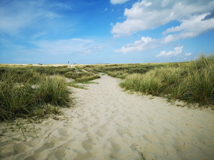 Düne mit Sandstrand am Meer 4