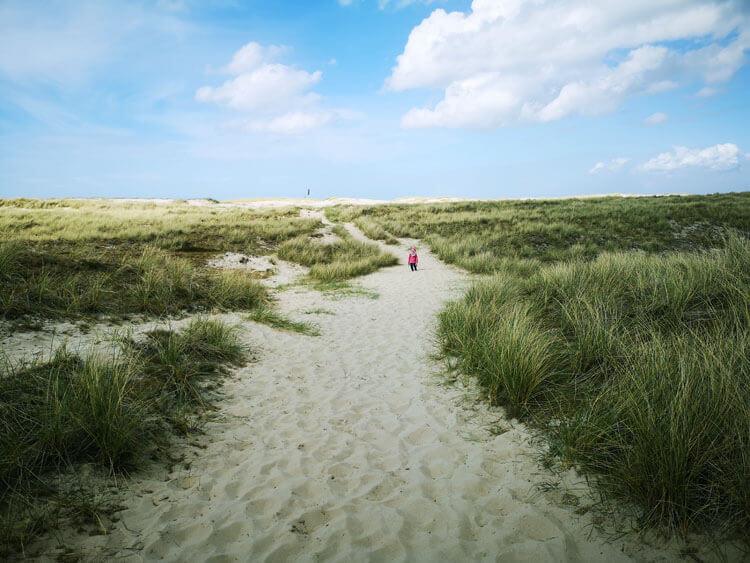 Düne mit Sandstrand am Meer 5