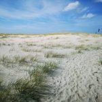 Fotovorlagen zum Abzeichnen: Dünen