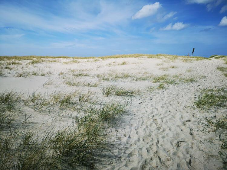 Düne mit Sandstrand am Meer 7