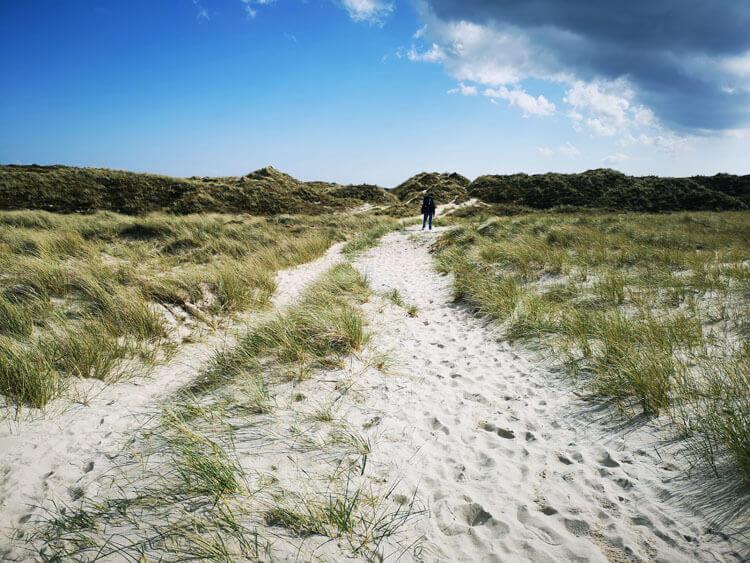 Düne mit Sandstrand am Meer 8