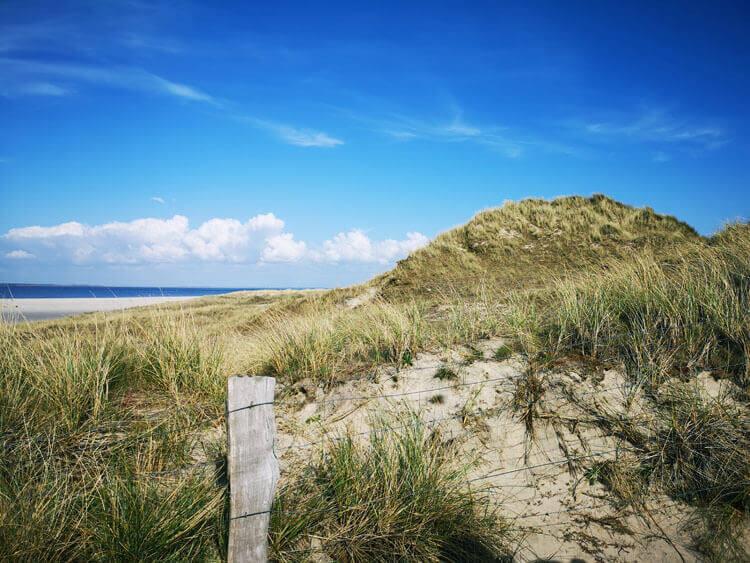 Düne mit Sandstrand am Meer 3