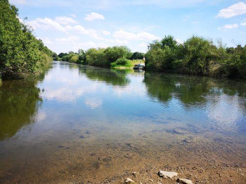 Fotovorlage - heimische Natur: Fluss und Flussufer 1