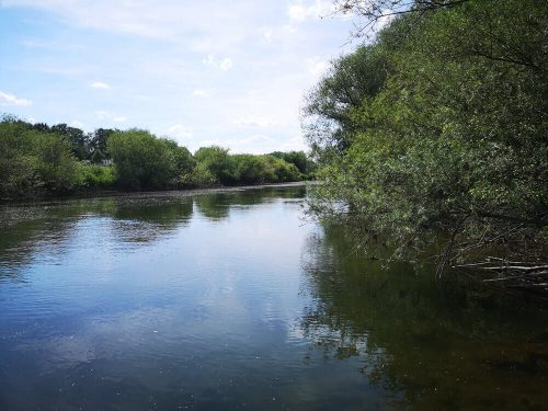 Fotovorlage: Fluss und Flussufer 3