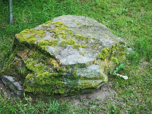 Fotovorlage - heimische Natur: Bemooster Stein im Gras 2