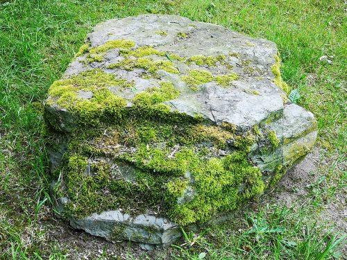 Fotovorlage - heimische Natur: Bemooster Stein im Gras 3