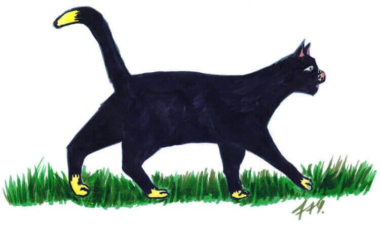 Katze mit Filzstift malen - läuft