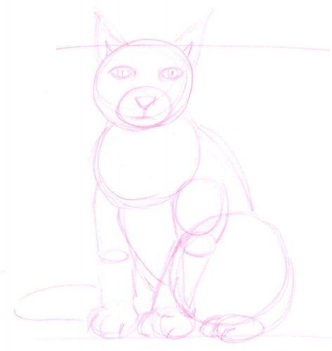 Sitzende Katze zeichnen: Bleistiftskizze