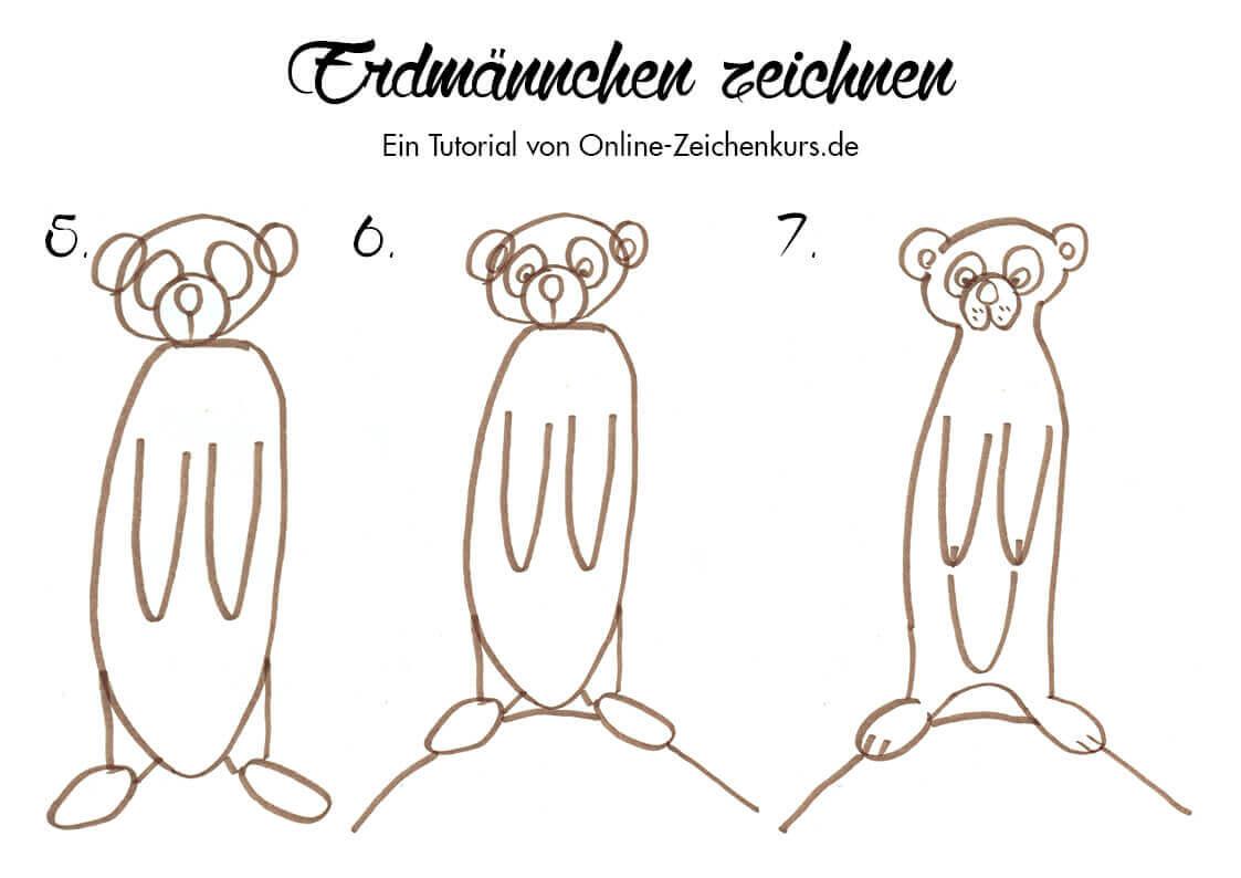 Erdmännchen zeichnen - Anleitung für Kinder 2