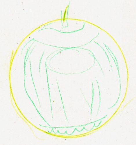 Alex' Apfelzeichnungen Schritt 2 - Kreis um Details erweitert