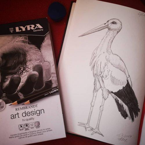 Bleistiftzeichnung mit Lyra Rembrandt art design Bleistift