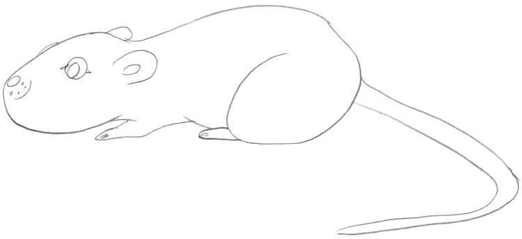 Beispiel - Maus sitzt (von der Seite 2)