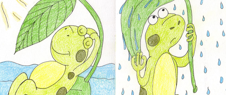 Wetterfrosch zeichnen - Titelbild
