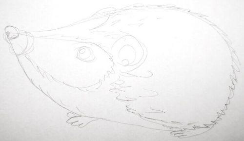 Igel zeichnen: Bleistiftskizze 3
