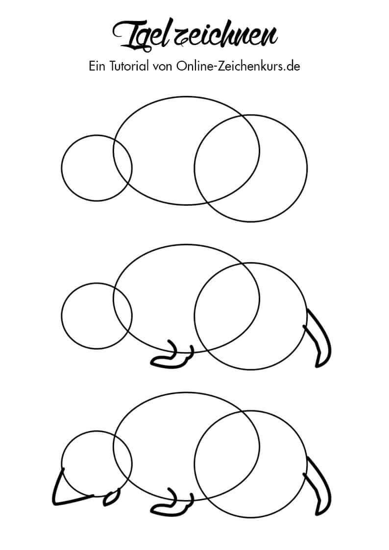 Tutorial: Igel zeichnen lernen 1