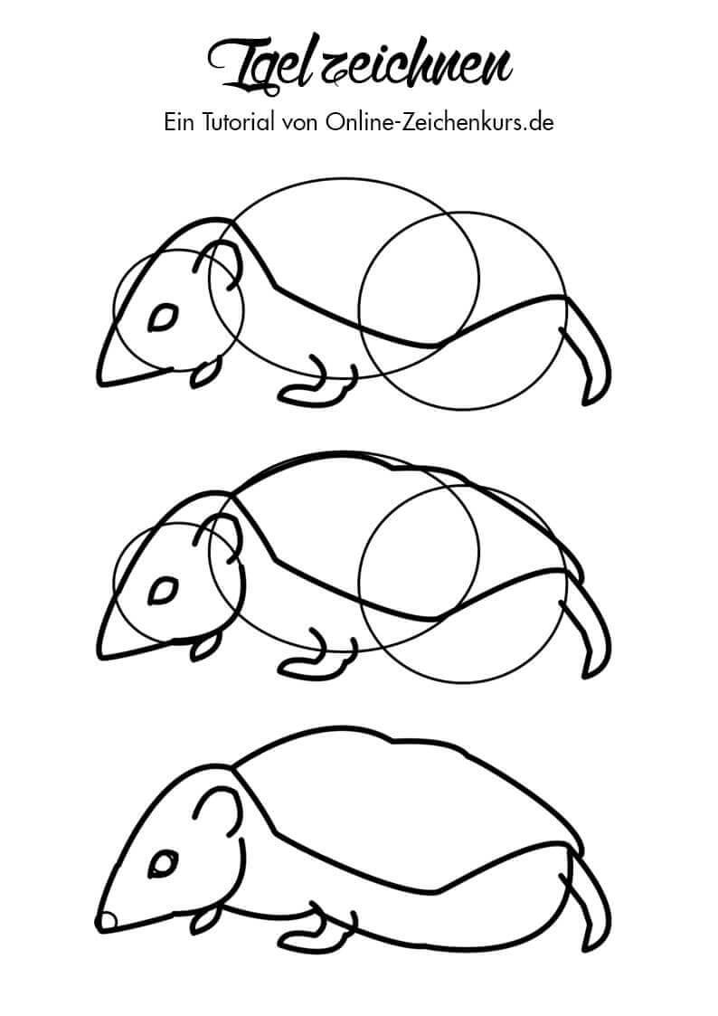 Tutorial: Igel zeichnen lernen 2