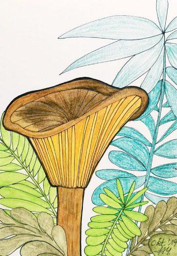 Aquarell Pilz malen: Kolorierung Schritt 4