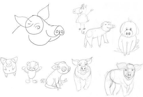 Schweine zeichnen: Zuerst kommt die Skizzen