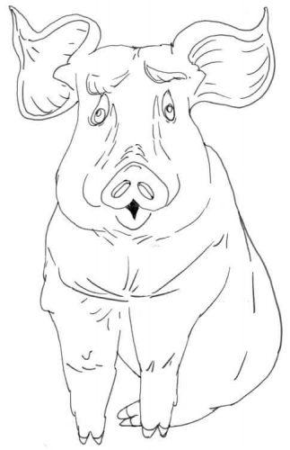 Sitzendes Schwein Zeichnung