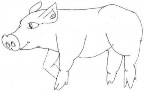 Stehendes Schwein Zeichnung