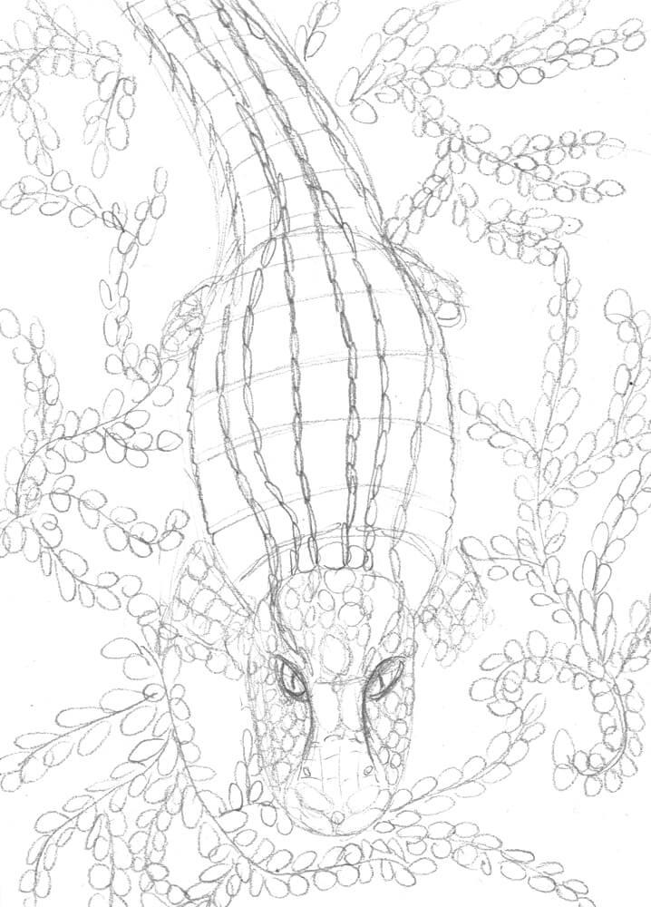 Krokodil Bleistiftskizze