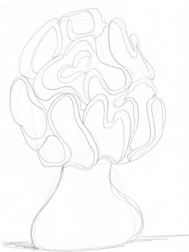 Pilze zeichnen: Beispiel Morchel