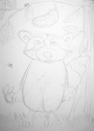 Waschbär zeichnen: Bleistiftskizze