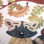 Waschbär zeichnen und malen