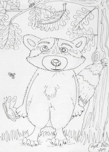 Waschbär zeichnen: Tuschekonturen