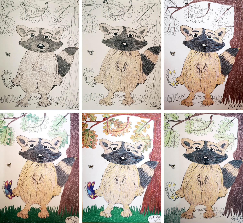 Waschbär zeichnen: Buntstiftkolorierung Schritte