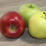 Apfel Fotovorlagen zum Abzeichnen