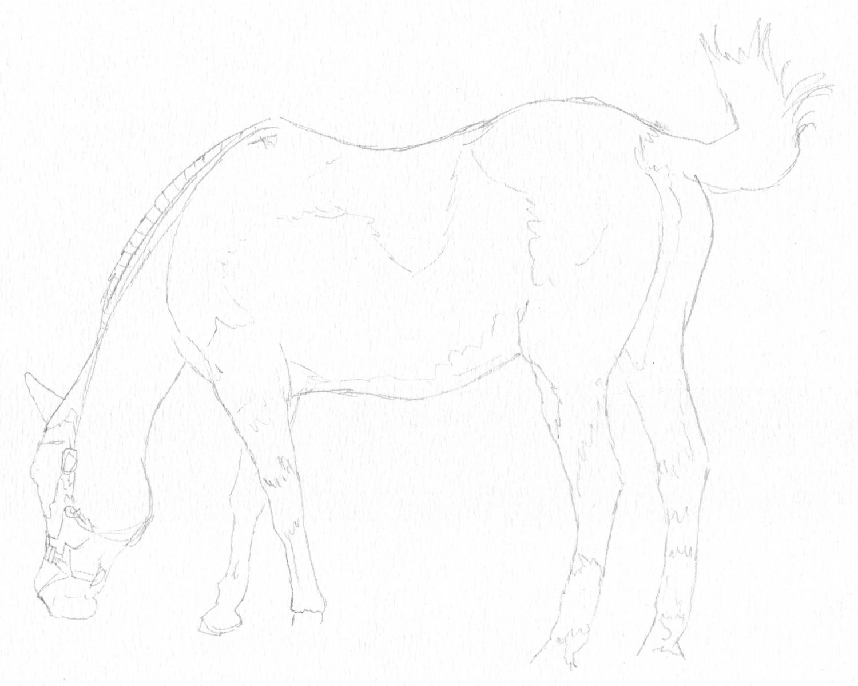 Grasendes Pferd Bleistiftskizze