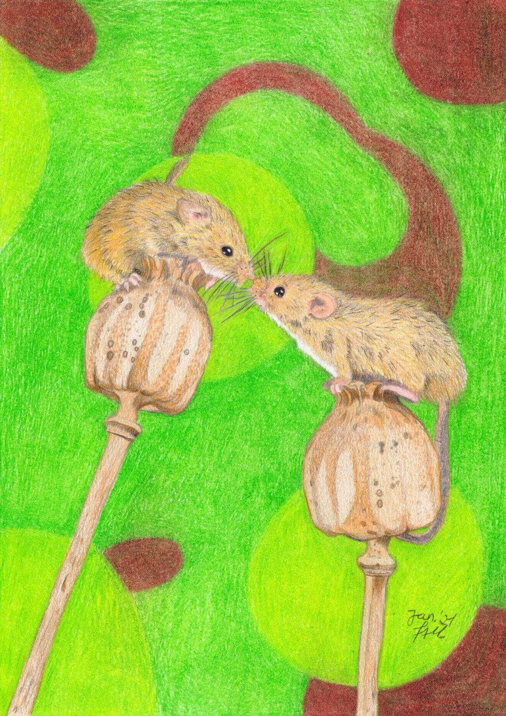Caran D'Ache Luminance Anwendungsbeispiel: Mäuse auf Mohnblume