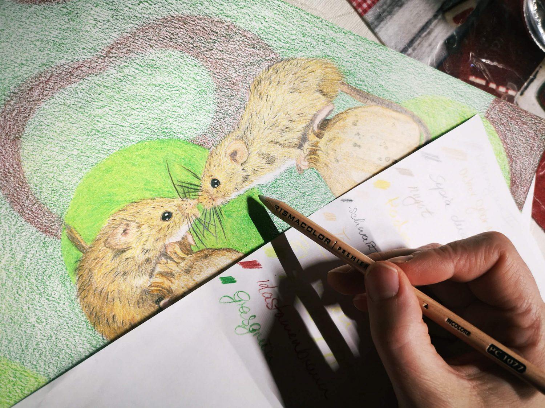 Mäuse Buntstiftbild - Hintergrund verblenden
