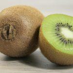 Kiwi Fotovorlagen zum Abzeichnen