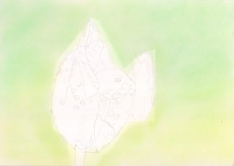 Maus in Tulpe zeichnen: Fertige Hintergrundgestaltung