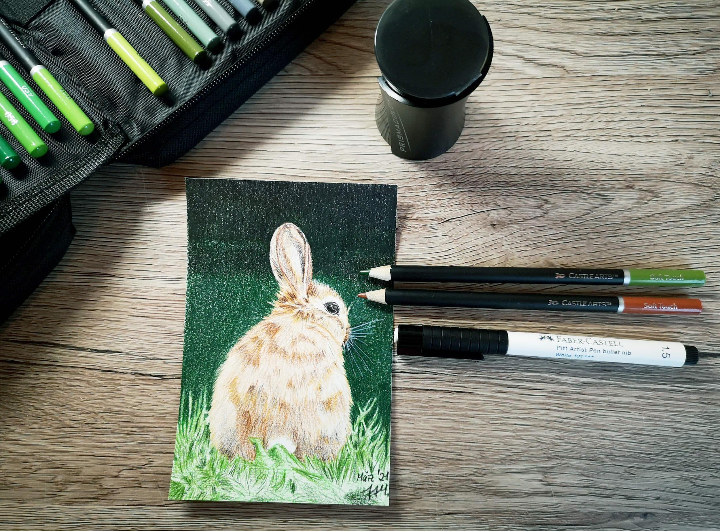 Braunes Kaninchen malen mit Buntstiften
